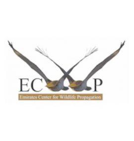 logo emirat center